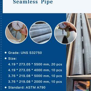 duplex pipe